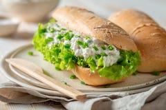 Smakelijke sandwich met sla, romig kaas en bieslook royalty-vrije stock afbeeldingen