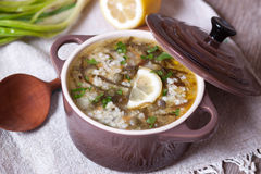Smakelijke soep in steelpannen, close-up Royalty-vrije Stock Fotografie