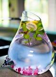 Smakelijke verfrissende gezonde drank Stock Foto