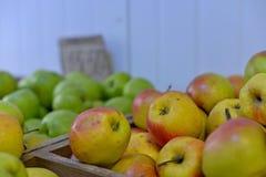 Smakelijke verse rode appelen bij kruidenierswinkelopslag Koop & eet natuurlijk vitaminevoedsel De afdeling van de landbouwersmar Stock Fotografie
