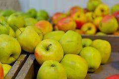 Smakelijke verse rode appelen bij kruidenierswinkelopslag Koop & eet natuurlijk vitaminevoedsel De afdeling van de landbouwersmar Royalty-vrije Stock Afbeelding