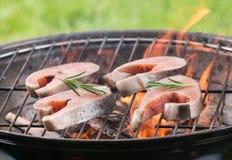 Smakelijke zalmlapjes vlees op de grill Royalty-vrije Stock Foto