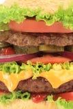 smaklig cheeseburger Fotografering för Bildbyråer