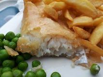 Smaklig fisk och chiper royaltyfri bild