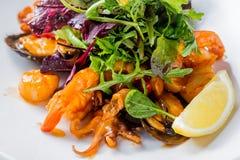 Smaklig fisksallad med räkor, behandla som ett barn bläckfisken, örter, ostron, citronen, grönsallat och sås isolerade den täta h Arkivfoto