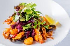 Smaklig fisksallad med räkor, behandla som ett barn bläckfisken, örter, ostron, citronen, grönsallat och sås isolerade den täta h Fotografering för Bildbyråer