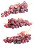 Smaklig grupp av röda druvor som isoleras Arkivfoton