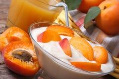 Smaklig horisontalaprikosyoghurt och ny fruktsaft Arkivbilder