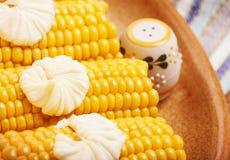 Smaklig kokt corncob fotografering för bildbyråer