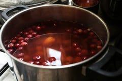 Smaklig kokt frukt av tranbär och druvor arkivfoto