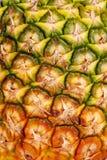 smaklig ny ananas Arkivfoton