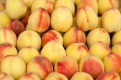 Smaklig ny persikabakgrund Royaltyfri Bild