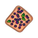 Smaklig ny strikt vegetariansmörgås med det söta blåbäret från trädgård stock illustrationer
