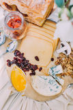 Smaklig sammansättning för närbild av de olika typerna av ost, katrinplommoner och valnötter som förläggas på brölloptableviewen  Royaltyfri Bild