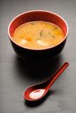 smaklig soup royaltyfria bilder