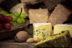 Smaklig vinmatställe med ost och druvor royaltyfri bild