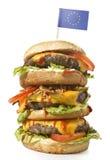 Smaklig XXL-hamburgare med flaggan av Europa serie Royaltyfri Fotografi