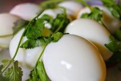 Smakliga ägg med coreanderbladet ser trevliga royaltyfria bilder