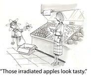 smakliga äpplen Royaltyfria Bilder