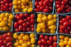 Smakliga Cherrytomater Arkivfoto