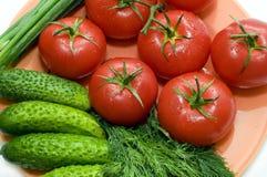 smakliga grönsaker Arkivbilder