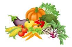 smakliga grönsaker för illustration Arkivfoto