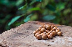 Smakliga hasselnötter som ligger på lantlig träbakgrund Royaltyfria Foton