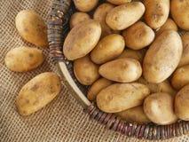 smakliga nya potatisar för korg Royaltyfri Fotografi