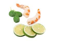 Smakliga räkor med limefrukt Fotografering för Bildbyråer
