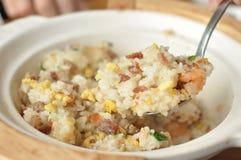 Smakliga stekte ris Arkivbild
