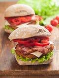 smakligt för feg fastfood för hamburgare varmt Arkivfoto