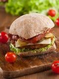 smakligt för feg fastfood för hamburgare varmt Fotografering för Bildbyråer