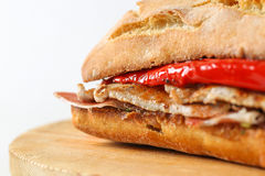 Smakligt griskött grillad serranitosmörgås i en ciabatta Royaltyfria Bilder