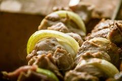 Smakligt griskött med lökar som är klara för en picknick Royaltyfria Bilder