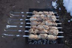 Smakligt griskött som grillas på kol Arkivfoton