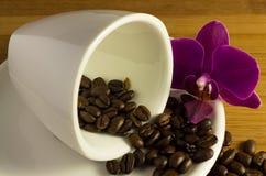 Smakligt kaffe med orkidén Arkivbilder
