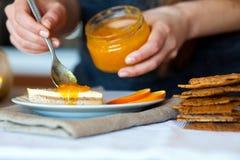 Smakligt stycke av kakaspridning med läckert aprikosdriftstopp Royaltyfria Bilder
