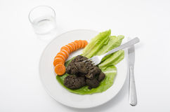 Smakosz srał z warzywami Obraz Stock