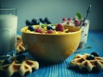 Smakowici cornflakes z malinkami i czarnymi jagodami na błękitnym tle Opłatki i mleko Wielki początek dzień obrazy royalty free
