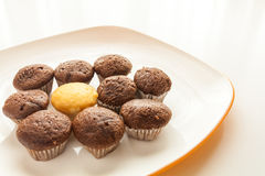 Smakowici czekoladowi muffins z jeden tortowym słodka bułeczka w centrum Zdjęcie Royalty Free