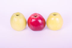 Smakowici czerwoni i żółci jabłka na bielu Zdjęcia Royalty Free
