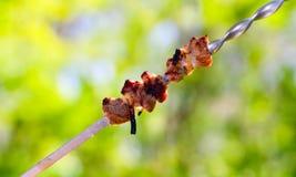 Smakowici kawałki piec na grillu mięso Zdjęcia Royalty Free