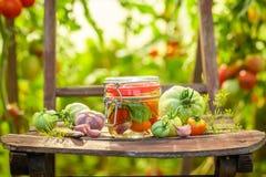 Smakowici kiszeni pomidory na starym krześle w szklarni obrazy royalty free