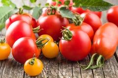 Smakowici różnorodni pomidory Fotografia Royalty Free