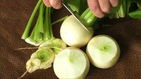 Smakowita świeża surowa biała round japońska rzodkiew z zielenią wywodzi się i opuszcza zbiory