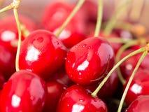 Smakowita czereśniowa owoc Zdjęcie Stock