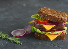 Smakowita kanapka robić chleb, pomidory, kiełbasa, cebula i sałata, na ciemnym tle, selekcyjna ostrość Obraz Royalty Free