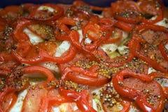 Smakowita naczynie potrawka z papryką i musztardą Obraz Stock