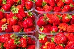 Smakowite soczyste truskawkowe jagody w pudełkach Obrazy Royalty Free