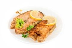 Smakowity czerwony rybi naczynie Obraz Stock